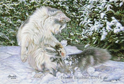 cat-ching snowballs by France Bauduin