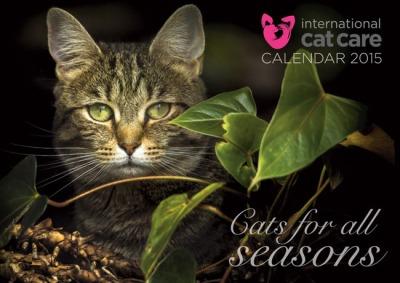 ICC-calendar2015Cover 2