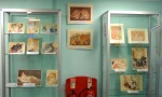 Yate Library Glass Cabinet Display