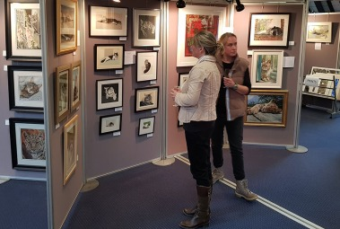 feline art show at cats protection april 2017 (5)
