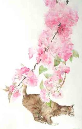 Blossom Branch and Cat