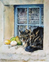 French Cat At The Window