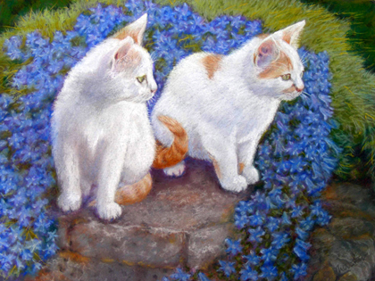 Kittens and Campanula