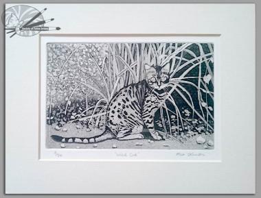 Alex Johnson Wild Cat Etching on Paper H 22.2 x W 29.7 £110 (mounted)