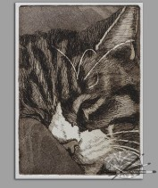 Avril_Sleeman-Look_Out-Etching_on_paper-110