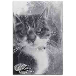 Dominic_O_Callaghan_The_title_Mandy_-_Face_at_the_window_Medium_Graphite_on_board_Size_28cm_H_x_19cm_W_850 (2)