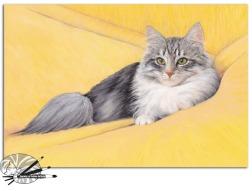 Jenny Alderton - Pretty Cat - Mixed Media - 250