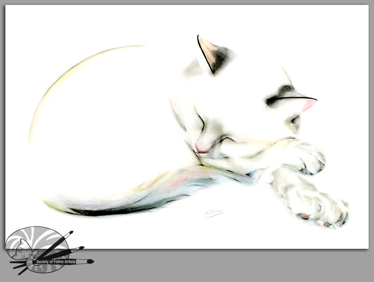 K Campbell-Rainbow Cat-Pastel,Graphite & Ink on Pap-300