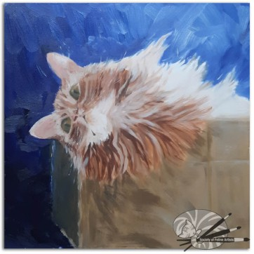 Michelle Hawes-Cat in a Box-345-Oil on Paper