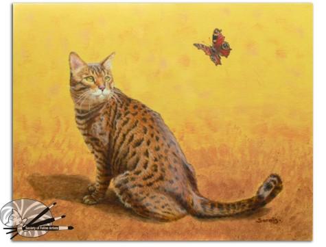 Sarais Crawshaw-Bengal Butterfly-Acrylic on Board-500.jpg